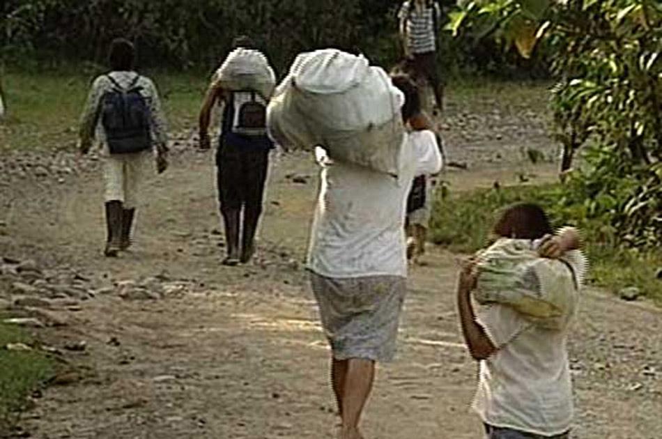 Mas de mil personas estan siendo desplazadas cada mes en Colombia