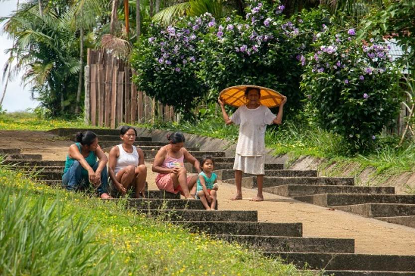Indígenas reciben su sustento reforestando la Amazonía