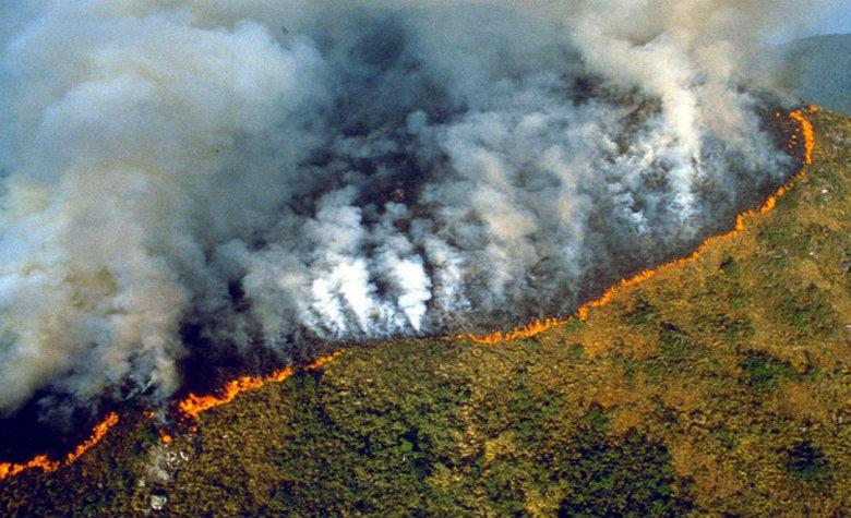 Voraz incendio destruye la selva Amazónica