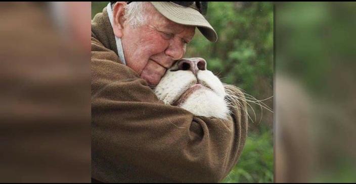 Animalista murió en ataque de dos leonas que había rescatado
