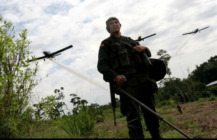 Reiniciar aspersión aérea, clave para evitar masacres: Mindefensa