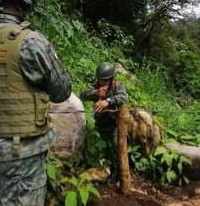 Autoridades controlan pasos ilegales en la frontera