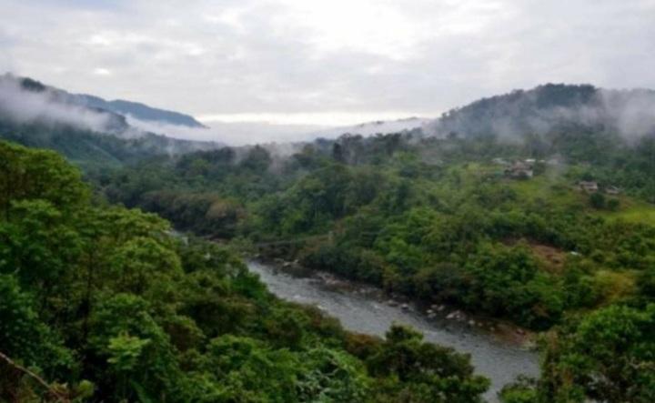 Denuncian la desaparición de dos jóvenes indígenas Awá en Nariño